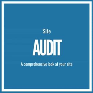Comprehensive Site Audit