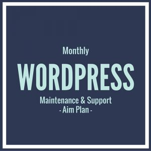 Wordpress maintenance and support plan